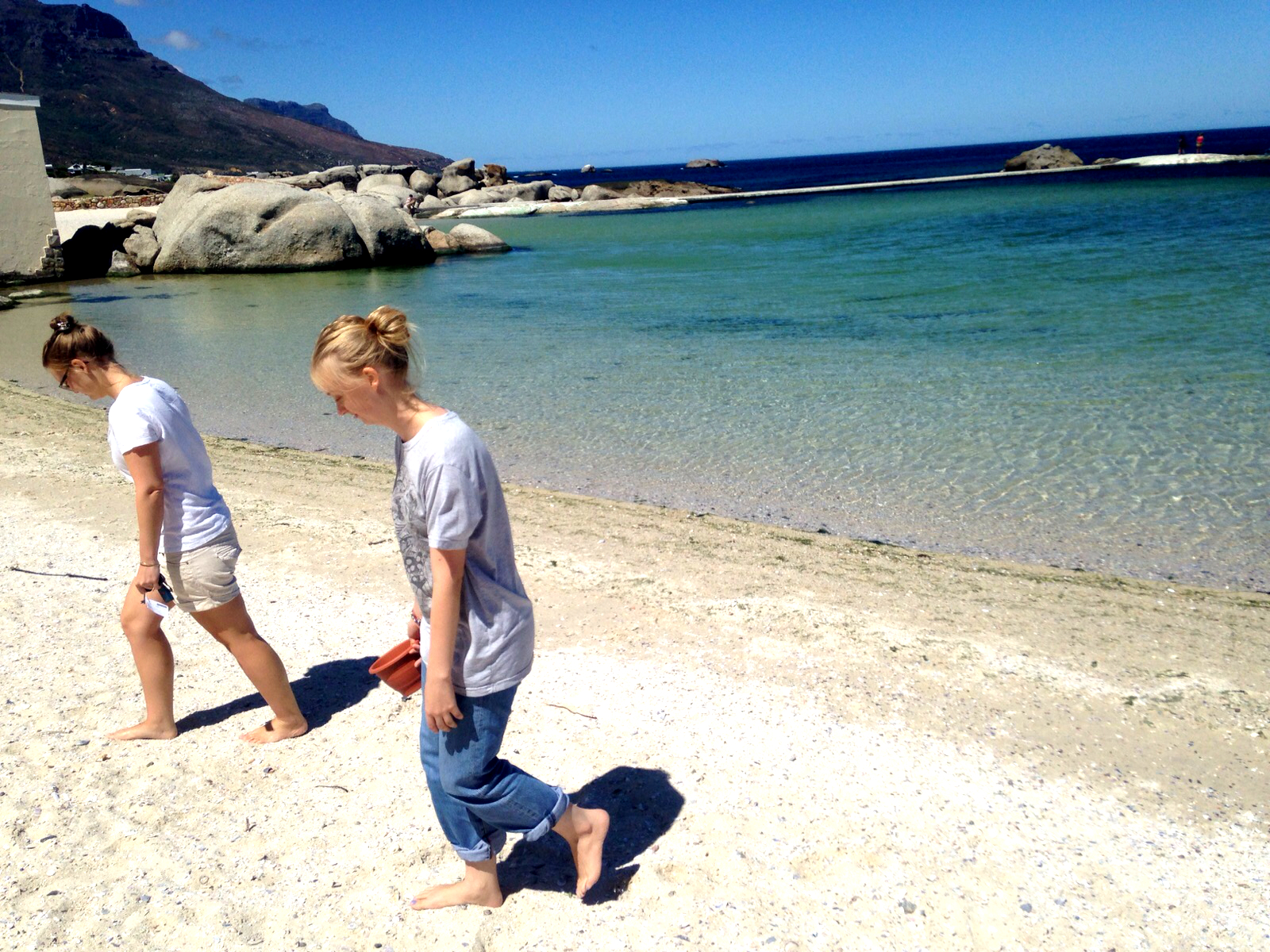 Pomegranite Online Presence Consultancy blog beach scavengers