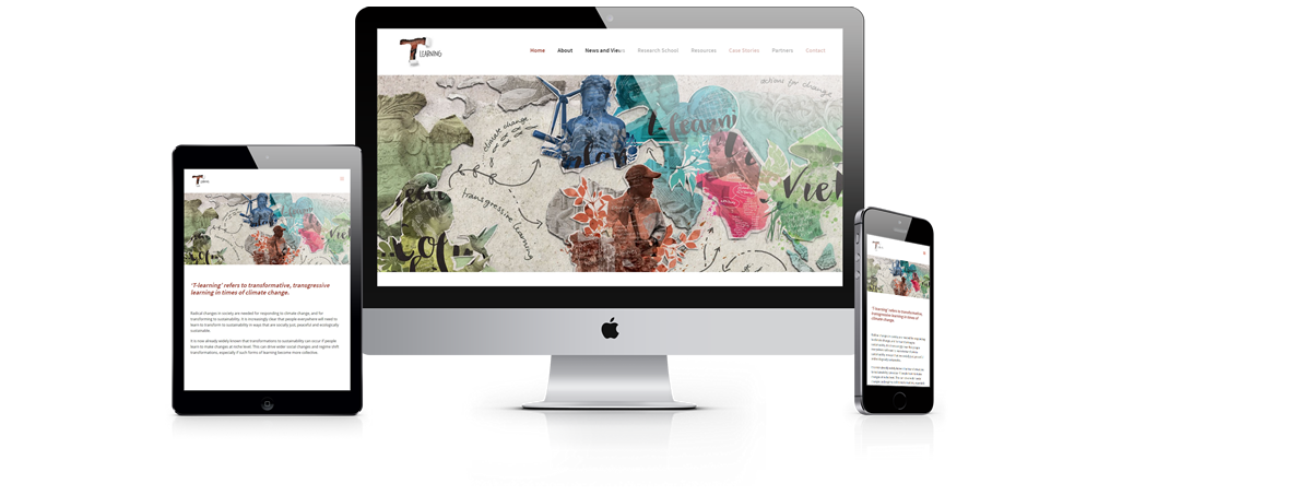 transgressive learning website development by Pomegranite